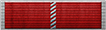 Lifetime Service Ribbon 1 year