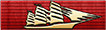 Midshipman Program Ribbon
